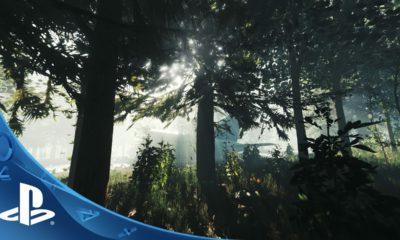The Forest per Playstation 4 ha una data d'uscita 1