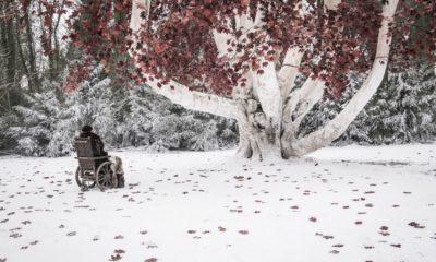 Game Of Thrones stagione 8 episodio 2 - Recensione 13