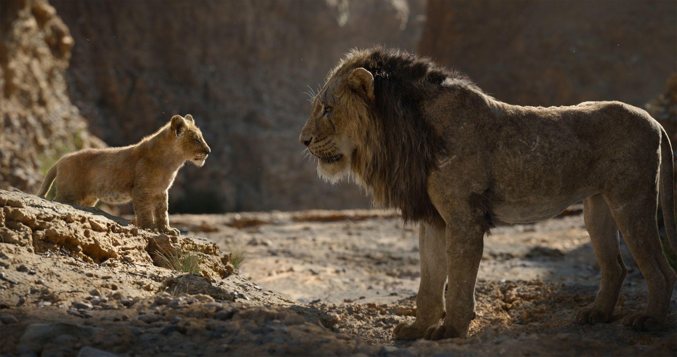 Risultati immagini per the lion king 2019