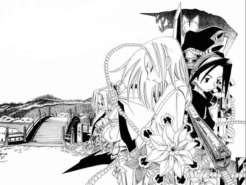 shaman king final edition manga